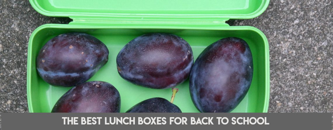 The Best Lunch Boxes for Back To School